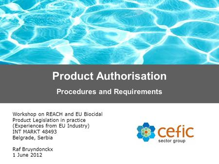 Product Authorisation Workshop on REACH and EU Biocidal Product Legislation in practice (Experiences from EU Industry) INT MARKT 48493 Belgrade, Serbia.