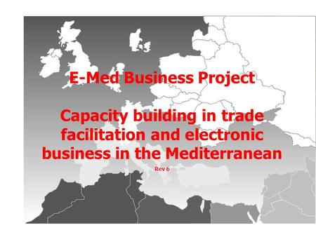 E-Med Business Project Capacity building in trade facilitation and electronic business in the Mediterranean Rev 6.