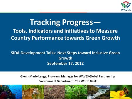 Tracking Progress— Tools, Indicators and Initiatives to Measure Country Performance towards Green Growth SIDA Development Talks: Next Steps toward Inclusive.