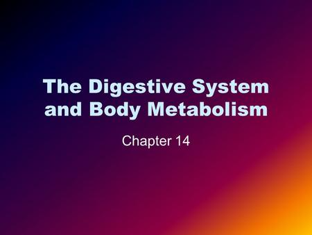 The Digestive System <strong>and</strong> Body Metabolism Chapter 14.