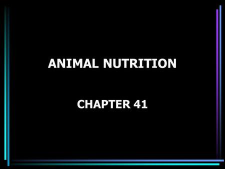 ANIMAL NUTRITION CHAPTER 41. Figure 41.0 Animals eating: foal, bear, and stork.