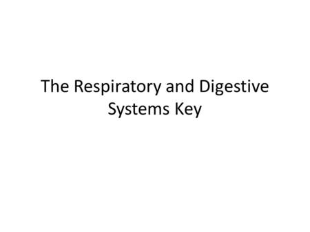 The Respiratory and Digestive Systems Key. I. The Respiratory System 1.Define respiratory system. The system that functions to get oxygen from the environment.