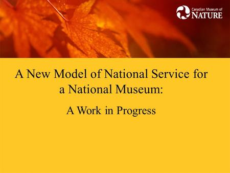 A New Model of National Service for a National Museum: A Work in Progress.