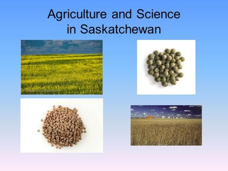 Agriculture and Science in Saskatchewan. Vision and Reality for the Future Drew L. Kershen Earl Sneed Centennial Professor of Law University of Oklahoma,