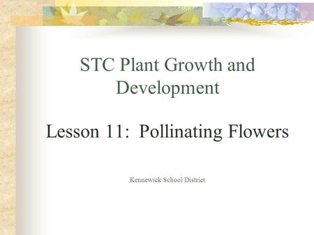 STC Plant Growth and Development Lesson 11: Pollinating Flowers Kennewick School District.