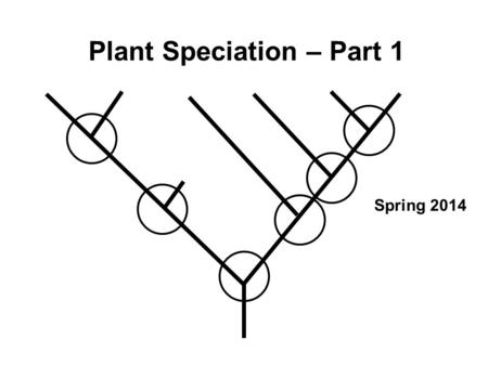 Plant Speciation – Part 1 Spring 2014. Major topics Variation in plant populations and species (1) Gene flow and reproductive isolating barriers (1) Speciation.
