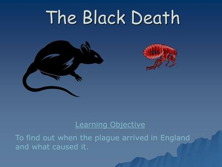 The Black Death Learning Objective To find out when the plague arrived in England and what caused it.