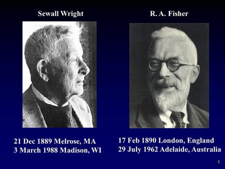 1 17 Feb 1890 London, England 29 July 1962 Adelaide, Australia 21 Dec 1889 Melrose, MA 3 March 1988 Madison, WI Sewall WrightR. A. Fisher.