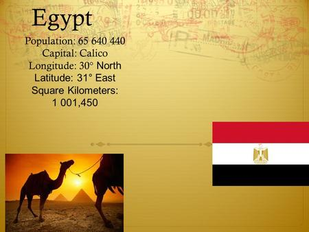 solution for overpopulation in egypt