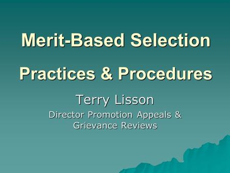 Merit-Based Selection Practices & Procedures Terry Lisson Director Promotion Appeals & Grievance Reviews.