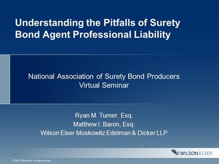 1 © 2013 Wilson Elser. All rights reserved. Understanding the Pitfalls of Surety Bond Agent Professional Liability National Association of Surety Bond.