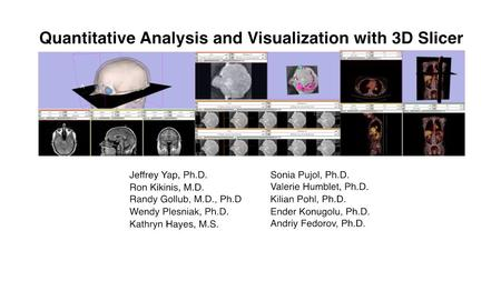 -- CTSA at RSNA 2010 An end-user application for image analysis and visualization An open-source environment for software development A software platform.