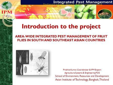 Introduction to the project AREA-WIDE INTEGRATED PEST MANAGEMENT OF FRUIT FLIES IN SOUTH AND SOUTHEAST ASIAN COUNTRIES Prabhat Kumar, Coordinator & IPM.