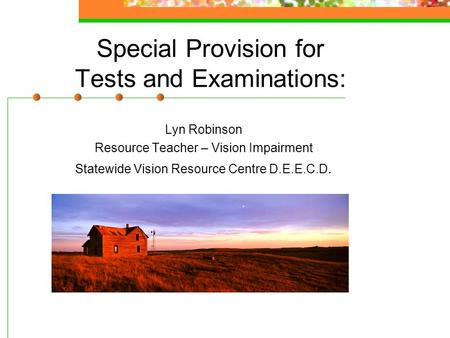 Special Provision for Tests and Examinations: Lyn Robinson Resource Teacher – Vision Impairment Statewide Vision Resource Centre D.E.E.C.D.