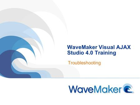 WaveMaker Visual AJAX Studio 4.0 Training Troubleshooting.