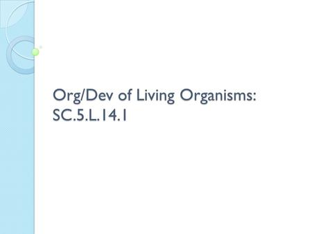 Org/Dev of Living Organisms: SC.5.L.14.1. What is the purpose of the pancreas? A. mixing blood and oxygen B. removing excess fluids from the body C. storing.