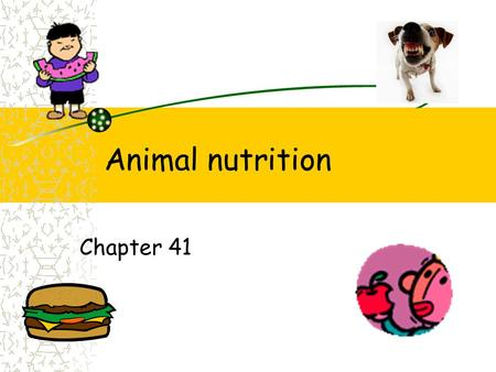 Animal nutrition Chapter 41. Function 1. Digestion 2. Absorption of nutrients/water –Energy –Growth 3. Elimination.