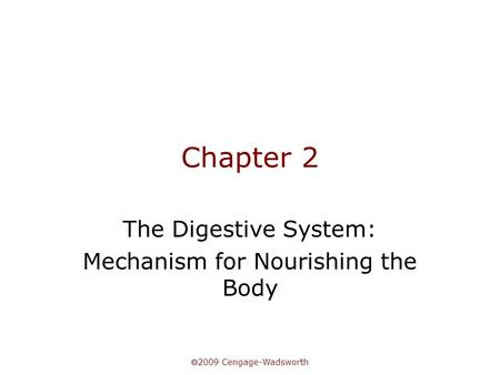 The Digestive System: Mechanism for Nourishing the Body