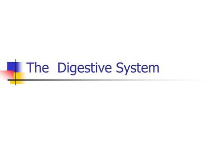 The Digestive System. 3 functions Digestion – breakdown of food into nutrients that can be absorbed in the form of molecules Absorption – passage of nutrients.