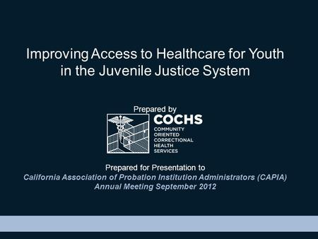 Improving Access to Healthcare for Youth in the Juvenile Justice System Prepared by Prepared for Presentation to California Association of Probation Institution.