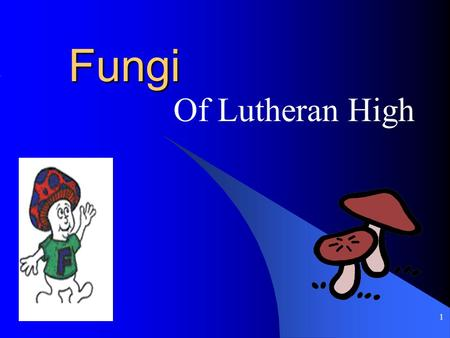 1 Fungi Of Lutheran High 2 What is a fungi? Usually they are popular Have a sense of humor Appreciates you.