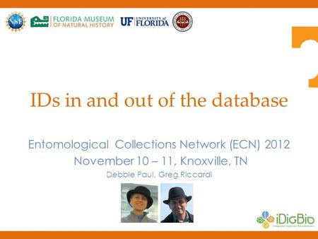 IDs in and out of the database Entomological Collections Network (ECN) 2012 November 10 – 11, Knoxville, TN Debbie Paul, Greg Riccardi.