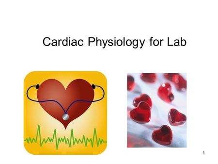 Cardiac Physiology for Lab 1. Cardiac Output (CO) Blood pressure Vessel resistance 2.