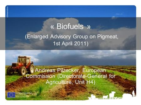 « Biofuels » (Enlarged Advisory Group on Pigmeat, 1st April 2011) Andreas Pilzecker, European Commission (Directorate-General for Agriculture, Unit H4)