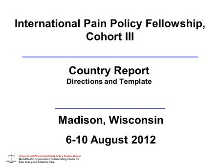 University of Wisconsin Pain & Policy Studies Group World Health Organization Collaborating Center for Pain Policy and Palliative Care International Pain.