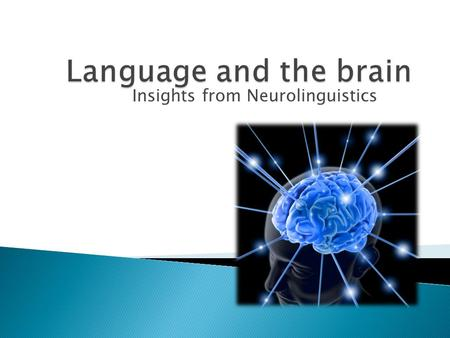 Insights from Neurolinguistics.  Brain and spinal cord constitute the central nervous system (CNS) ◦ Purpose: Communication  Cellular unit of the nervous.