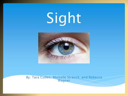 Sight By: Tara Cullen, Michelle Strauck, and Rebecca Wagner.