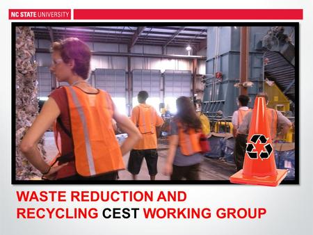 WASTE REDUCTION AND RECYCLING CEST WORKING GROUP.