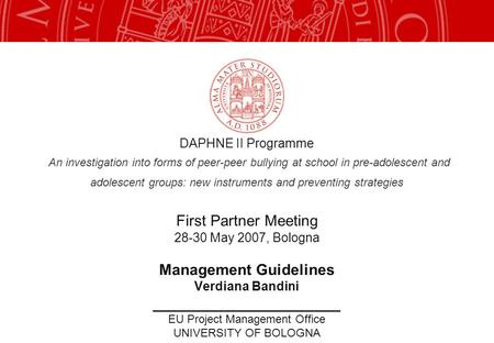 DAPHNE II Programme An investigation into forms of peer-peer bullying at school in pre-adolescent and adolescent groups: new instruments and preventing.