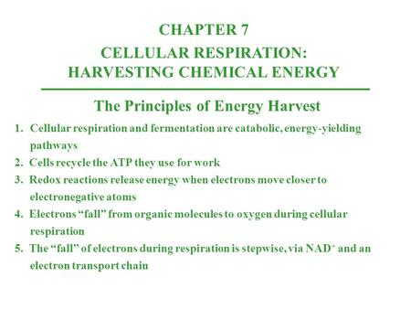 The Principles of Energy Harvest 1.Cellular respiration and fermentation are catabolic, energy-yielding pathways 2. Cells recycle the ATP they use for.