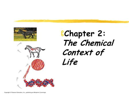 ZChapter 2: The Chemical Context of Life. Chemical Context of Life zMatter (space & mass) zElement zCompound zThe atom zAtomic number (# of protons);
