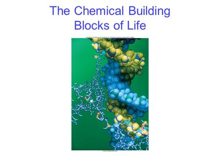The Chemical Building Blocks of Life. 2 Carbon Framework of biological molecules consists primarily of carbon bonded to –Carbon –O, N, S, P or H Can form.