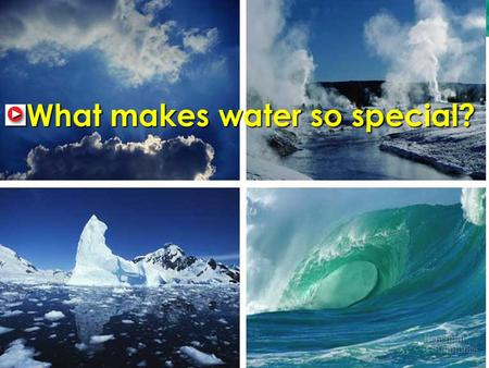 2.2 Properties of Water What makes water so special?