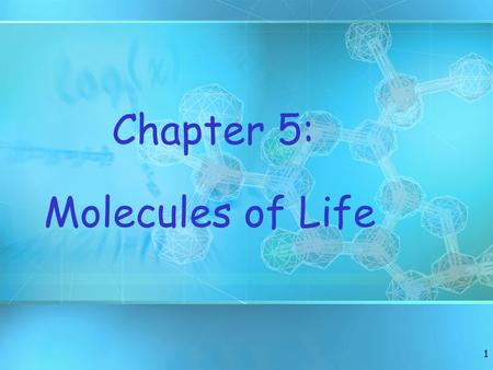Chapter 5: Molecules of Life.