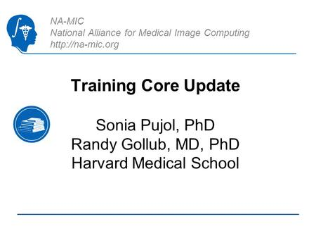 NA-MIC National Alliance for Medical Image Computing  Training Core Update Sonia Pujol, PhD Randy Gollub, MD, PhD Harvard Medical School.