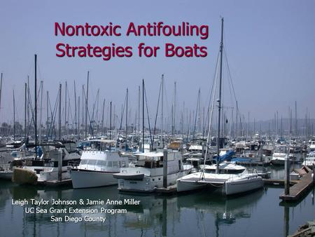 Nontoxic Antifouling Strategies for Boats