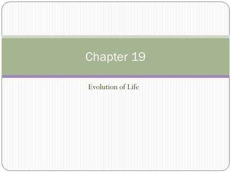 Evolution of Life Chapter 19. The Paleozoic Era (570 to 240 million years ago) Global conditions were seasonal with changes in winds, ocean currents,