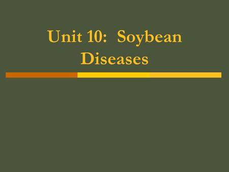 Unit 10: Soybean Diseases.  Bacterial Blight Occurs on leaves of the SB  Small angular spots  Appear yellow at first  Later turn brown to black 
