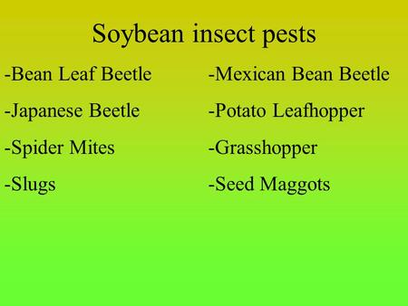 Soybean insect pests -Bean Leaf Beetle-Mexican Bean Beetle -Japanese Beetle-Potato Leafhopper -Spider Mites-Grasshopper -Slugs-Seed Maggots.