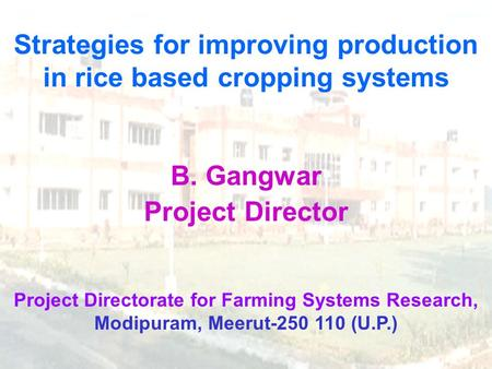 Strategies for improving production in rice based cropping systems B. Gangwar Project Director Project Directorate for Farming Systems Research, Modipuram,