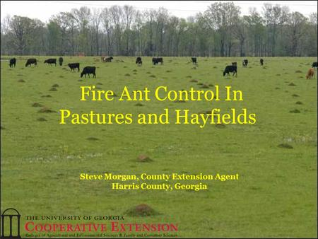 Steve Morgan, County Extension Agent Harris County, Georgia Fire Ant Control In Pastures and Hayfields.