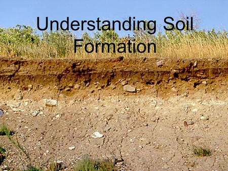 Understanding Soil Formation. Objectives Identify five factors involved in soil formation. Describe different types of parent material. Explain topography.