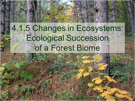 4.1.5 Changes in Ecosystems: Ecological Succession of a Forest Biome.