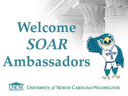 Welcome SOAR Ambassadors. Contact Information Megan Wojciak Scholarship Counselor & SOAR Program Coordinator Office of Scholarships & Financial Aid in.