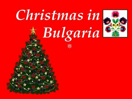 Christmas in Bulgaria.