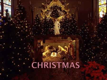 They decorate their houses in the traditional way, that is the Christmas trees are set up in houses, in the streets and churches.